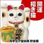 Yahoo!ヘルシーラボ最大500円クーポン 両手上げ宝当猫 貯金箱 M2547