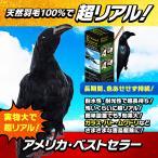 【New防鳥クローン・カラス(VS-102)】カラス・ハト(鳩)・ムクドリ・ヒヨドリ・スズメ・ツバメなどの害鳥を駆除・退治・撃退・対策・寄せ付けない!