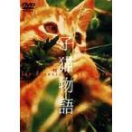 子猫物語  〔DVD〕