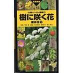 樹に咲く花 離弁花 1 山渓ハンディ図鑑 / 茂木透  〔図鑑〕