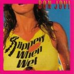 Bon Jovi ボン ジョヴィ / Slippery When Wet + 3  国内盤 〔SHM-CD〕