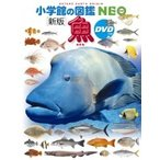 新版 魚 DVDつき 小学館の図鑑NEO / 井田齋  〔図鑑〕