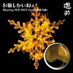 遊助 (上地雄輔) カミジユウスケ / お前しかいねぇ 遊turing RED RICE《from湘南乃風》  〔CD Maxi〕