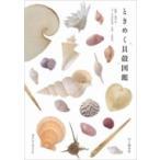 ときめく貝殻図鑑 最近「波の音」と暮らしはじめました。 ときめく図鑑 Book for Discovery / 寺本沙也加  〔本〕