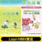 植物図鑑 / 【Loppi・HMV限定】植物図鑑 運命の恋、ひろいました 豪華版(初回限定生産) [ブルーレイ]「オリジ