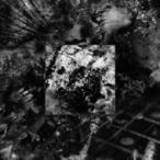 Sugizo (Luna Sea) スギゾー / 音  〔SHM-CD〕