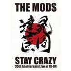 THE MODS モッズ / STAY CRAZY  〔DVD〕