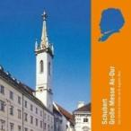 Schubert シューベルト / ミサ曲第5番、サルヴェ・レジーナ ロベルト・リーダー & 聖アウグスティーナ教会合唱