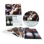 写真家ソール ライター 急がない人生で見つけた13のこと  DVD