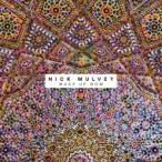 Nick Mulvey / Wake Up Now (180グラム重量盤)  〔LP〕