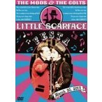 THE MODS×THE COLTS / LITTLE SCARFACE FASTA  〔DVD〕