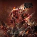 Morbid Angel �⡼�ӥåɥ����� / Kingdom Disdained ������ ��CD��