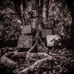 Kamasi Washington / Harmony Of Difference ͢���� ��CD��
