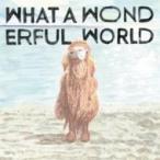 堀込泰行 / What A Wonderful World  〔CD〕