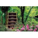 日本風景 シャクナゲ咲く室生寺(M71-827) ビバリー 1000マイクロピースピース ジグソーパズル