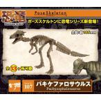 ポーズスケルトン 恐竜シリーズ 107 パキケファロサウルス リーメント
