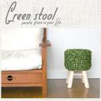 スツール 椅子 おしゃれ 木製 北欧 緑のスツール 木製スツール グリーン デザイナーズチェア オットマンに最適! 【PECUTA】