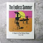 【国内未流通】ザ・エンドレスサマー THE ENDLESS SUMMER tes