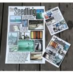 【限定10枚プレミアムポスター付き】DVD The Seedling(シードリング トーマスキャンベル Thomas Campbell サーフィン ロングボード シングルフィン)