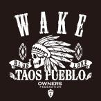 カッティングステッカー ダイハツ(DAIHATSU)WAKE ウェイク apache 車 カー ステッカー  アクセサリー シール ガラス オーダーメイド  転写[◆]