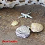 ボタン 釦 コンチョボタン 手芸 パーツ モチーフ 45mm 貝殻 マリン おしゃれ かわいい シルバー ゴールド フックドゥ ズパゲッティ