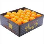 お歳暮 ギフト フルーツ 送料無料 愛媛県産JAにしうわ 味ピカみかん(5kg) / 御歳暮 お歳暮ギフト 果物 冬の果物 旬の果物 ミカン お取り寄せ セット 内祝い