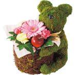 母の日 プレゼント ギフト 2018 送料無料 母の日アレンジメント ベアー【M】 / プレゼント 贈り物 アレンジメントフラワー 苔 人形 お花 フラワーギフト 御祝い