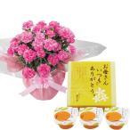 母の日 ギフト 贈り物 送料無料 ピンクカーネーション鉢植えとまるごとみかんゼリーのセット / 2020 鉢花 鉢植え カーネーション スイーツ 花とセット 花