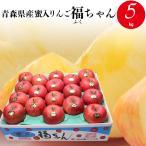 ギフト フルーツ りんご 送料無料 青森県産 蜜入りんご 福ちゃん 5kg / 果物 青果 プレゼント ギフト 旬 収穫 青森 東北