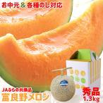 2021年ご予約承り中 7月出荷開始 北海道 富良野メロン(共撰 秀品 約1.3kg×1玉) / ギフト 贈り物 内祝い 暑中見舞い 北海道産 フルーツ お取り寄せ