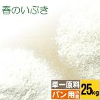 送料無料 小麦粉 強力粉 春のいぶき 大袋(25kg)25キロ  【北海道産/単一原料小麦100%使用】