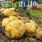 今季出荷開始中 越冬じゃがいも 送料無料 北海道産 男爵いも10kg(2Lサイズ) / 10kg 男爵 男爵芋 だんしゃく いも ジャガイモ 北海道 野菜