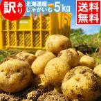 訳アリ 産地直送 越冬じゃがいも 送料無料 北海道産 じゃがいも 訳あり北海道産じゃがいも(5kg)/ 5kg ジャガイモ 北海道 産地直送 とうや 男爵薯