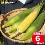2021年早期予約承り中 8月出荷開始 北海道産 とうもろこし 味来 6本入り / トウモロコシ とうきび 北海道 産地直送 新鮮 品種