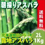 お中元 御中元 送料無料 北海道産 グリーンアスパラガス 1kg 2Lサイズ【国産 国内産 産地直送 お取り寄せ 新鮮 ギフト 旬 露地物】