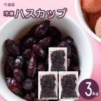 フルーツ フローズン ハスカップ 送料無料 北海道千歳産 冷凍ハスカップ 3kg  / 北海道 果物 はすかっぷ 無添加 無着色 常備 食材
