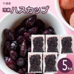 フルーツ フローズン ハスカップ 送料無料 北海道千歳産 冷凍ハスカップ 5kg  / 北海道 果物 はすかっぷ 無添加 無着色 常備 食材