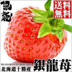 北海道産 銀龍苺「さがほのか」(1シート) / 送料無料 いちご イチゴ 産地直送 十勝 フルーツ 果物