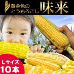 2021年早期予約承り中 8月出荷開始 北海道産 とうもろこし 味来 10本入り / トウモロコシ とうきび 北海道 産地直送 新鮮