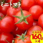 2021年ご予約承り中 7月出荷開始 南幌町明るい農村ネットワーク ミニトマト ギフト用 160g×4p入り / フルーツトマト お取り寄せ