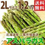 2021年ご予約承り中 4月出荷開始 北海道産 アスパラガス グリーンアスパラガス 1.2kg 2Lサイズ / 旬 産地直送 お取り寄せ 北海道 春野菜