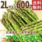 2021年ご予約承り中 4月出荷開始 北海道産 アスパラガス グリーンアスパラガス 600g 2Lサイズ / 旬 産地直送 お取り寄せ 北海道 春野菜