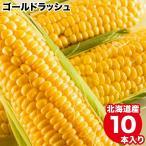 2021年ご予約承り中 9月出荷開始 北海道産 とうもろこし 送料無料 ゴールドラッシュ(10本入り) /トウモロコシ とうきび 産地直送 旬 人気 黄色 イエローコーン