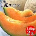 2021年ご予約承り中 7月出荷開始 メロン フルーツ ギフト 送料無料 北海道夕張産 日原メロン(約1.5kg×2玉) / 北海道 メロン フルーツ ゆうばり 果物 こだわり