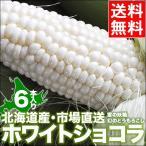 2021年ご予約承り中 9月出荷開始 北海道産 とうもろこし ホワイトショコラ(6本) / 北海道 ホワイト 白い トウモロコシ 産地直送
