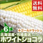 今季出荷開始 北海道産 とうもろこし 送料無料 ホワイトショコラ・ゴールドラッシュ食べ比べ(各3本) / ホワイト 白い トウモロコシ