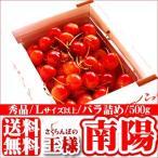 2021年ご予約承り中 7月出荷開始 フルーツ 送料無料 さくらんぼ 「南陽」 秀品サイズL以上 500g×1箱 (バラ詰め 化粧箱入り) / 桜桃 サクランボ 旬