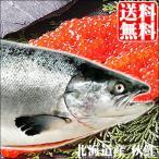 2020年ご予約承り中 9月出荷開始 送料無料 北海道産 さけ 秋鮭(メス)筋子付き 3.5kg / 北海道沖産 鮭 サケ さけ 旬の味覚 魚 しゃけ 水揚げ 海鮮 水産