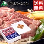 ラム肉 北海道 千歳ラム工房 生ラムタレ付き(600g) ジンギスカン 詰め合わせ 内祝い 御祝い 羊肉
