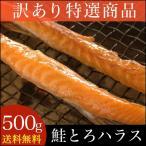 ■訳あり■鮭トロハラス (500g) 業務用 / わけあり 北海道 鮭とろ 海鮮珍味